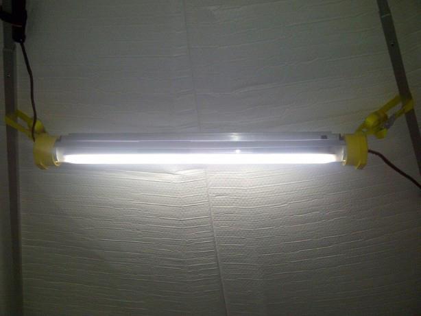 Wiring  U0026 Lighting
